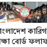 Polytechnic Diploma in Engineering Result 2019